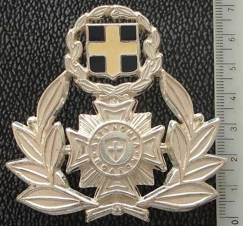 Can anyone identify this badge ?