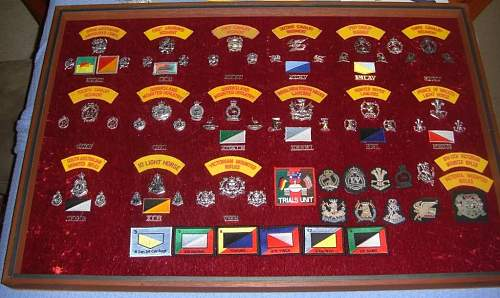Click image for larger version.  Name:RAAC-badges1.jpg Views:95 Size:150.0 KB ID:543073