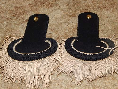 Can anyone tell me what these epaulets are from?