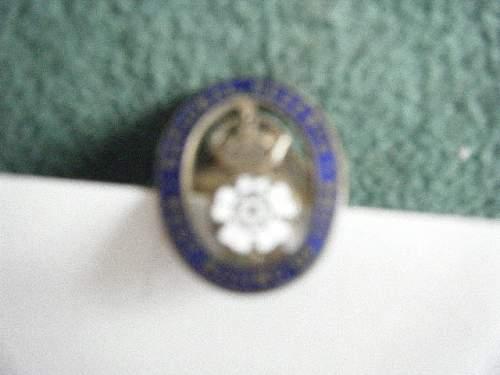 Army Reserve Lapel Badge