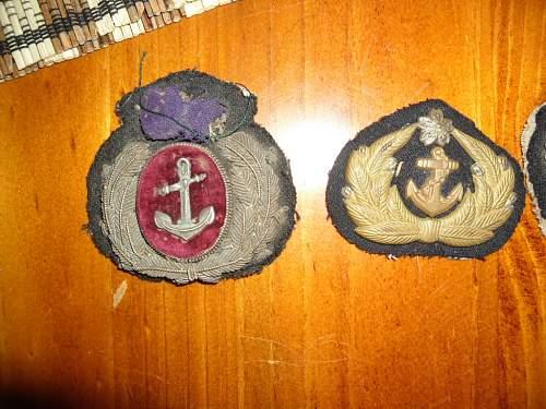Hi need help to identify cloth insignia and bullion badges