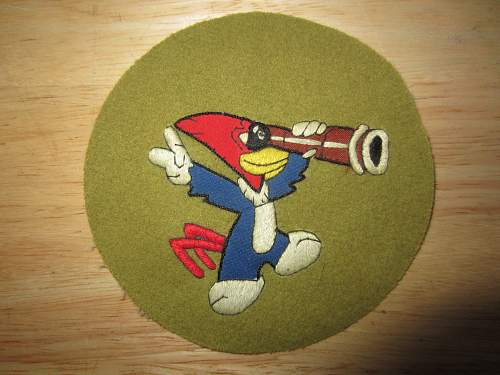 USAAF Squadron Patch