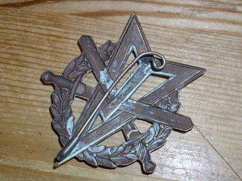 Unknown badge, French ?