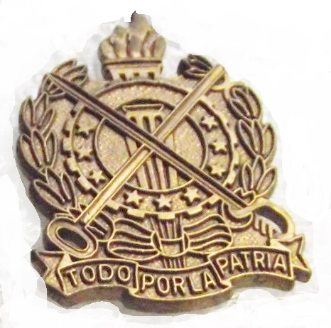 unknown cap badge for id