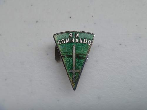 RM Commando Pin/Badge