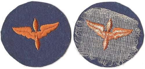 Click image for larger version.  Name:AAF Air Cadet (Blu).jpg Views:59 Size:165.7 KB ID:676160