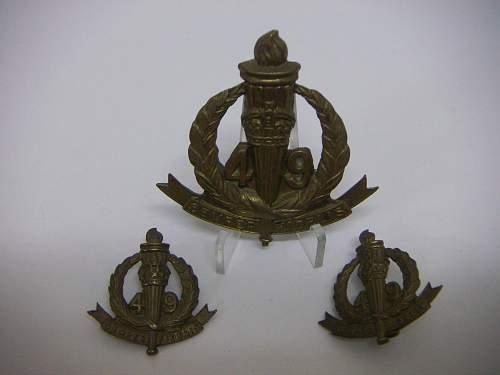 Click image for larger version.  Name:49th Battalion The Stanley Regiment Set 1.jpg Views:54 Size:144.5 KB ID:756156
