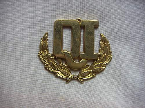 Click image for larger version.  Name:Qualified Instructor Badge 1.jpg Views:51 Size:335.9 KB ID:851743
