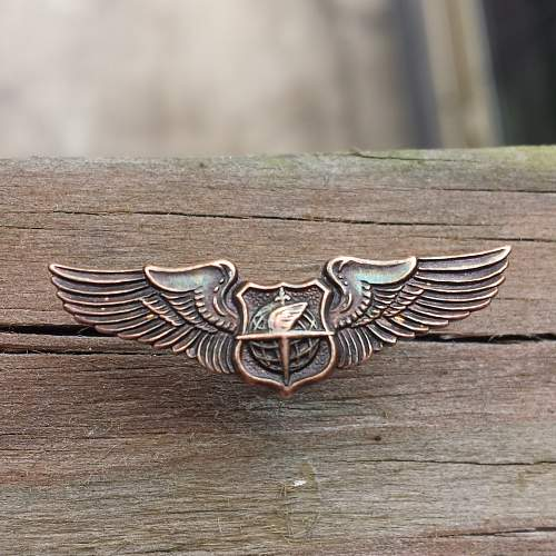 Strange Set of Wings