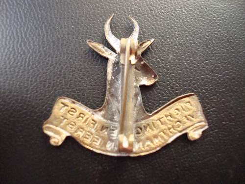 """fighting men first"" unknown badge, any ideas?"