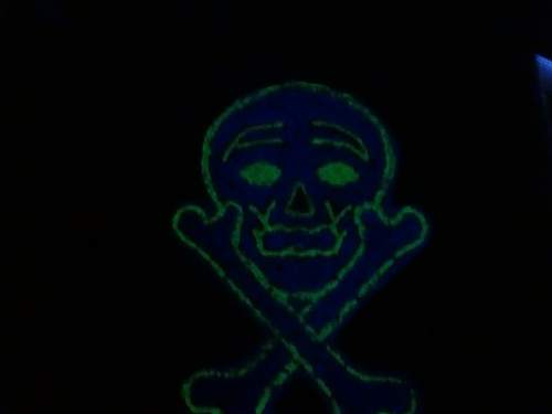 Click image for larger version.  Name:glowskull.jpg Views:15 Size:19.8 KB ID:935237