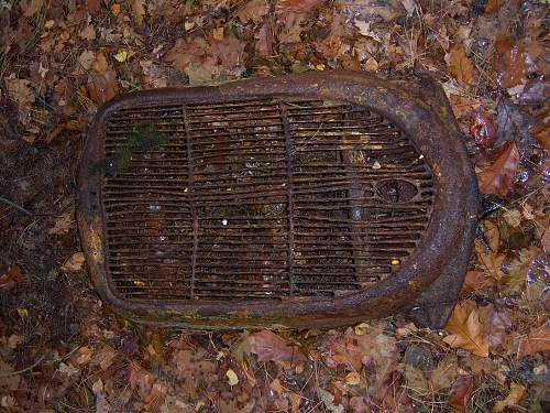 Grille found in the woods