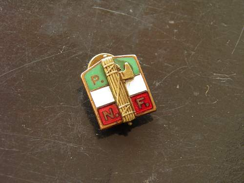PNF Pin