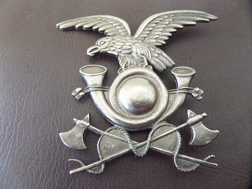 Help needed with Italian badge