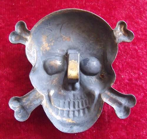 Unknown Skull