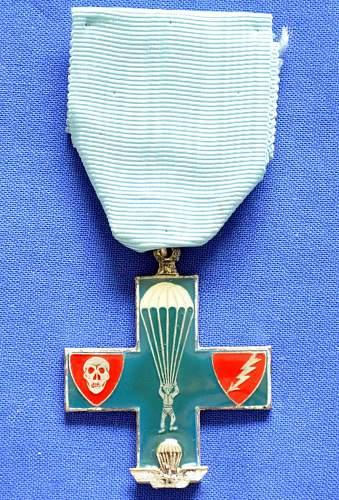 Paratroopers Medal?