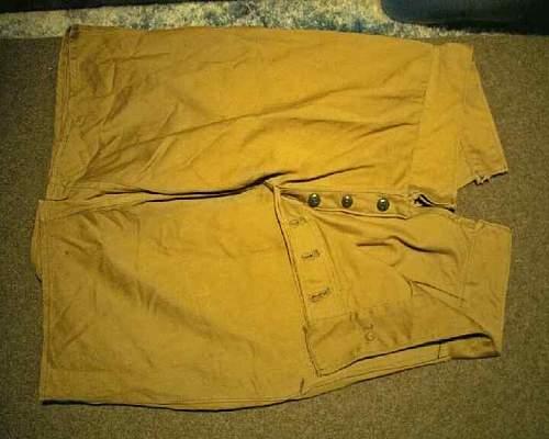 Italian Tropical Shorts