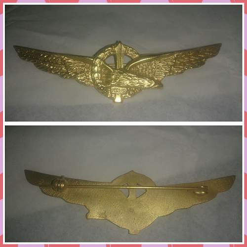 Fake Italian pilot badge ?