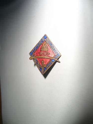 Italian Albanian Campaign Fascist Party Membership Badge ???