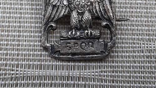 Italian Cap Badge ??
