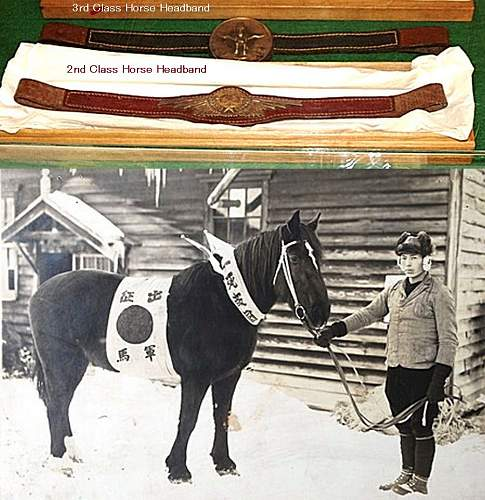 Click image for larger version.  Name:horse.jpg Views:2 Size:147.6 KB ID:1113548