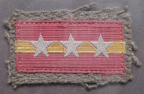 Click image for larger version.  Name:Sgt.-Majors-collar-tab..jpg Views:462 Size:125.2 KB ID:4363