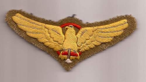 japanese parachute eagle badge ..real or fake