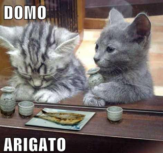 Name:  Domo Arigato.php.png Views: 114 Size:  178.4 KB