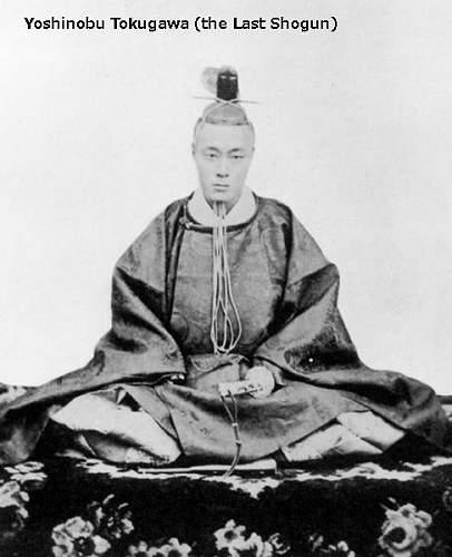Click image for larger version.  Name:13. Tokugawa_yoshinobu.jpg Views:7 Size:41.6 KB ID:891074