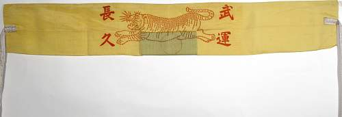 Click image for larger version.  Name:Yellow Tiger Belt, 5-4-16 003.jpg Views:16 Size:198.8 KB ID:959666