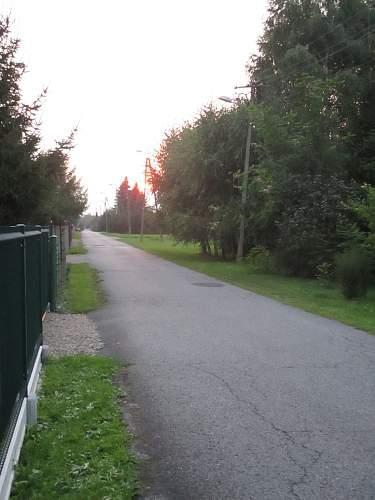 MONOWITZ (camp road).jpg