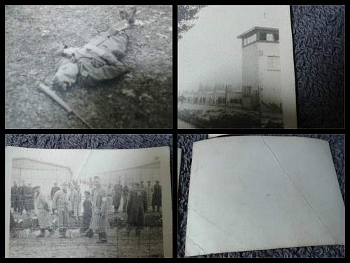 Concentration Camp Photo Lot ID?
