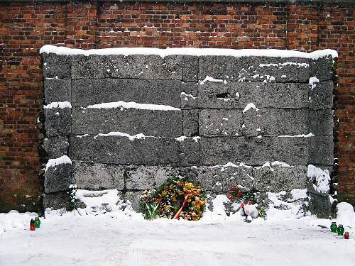 International Holocaust Remembrance Day, 27.1.
