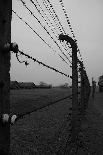 My Trip To Auschwitz-I, Birkenau, and KL-Plaszow
