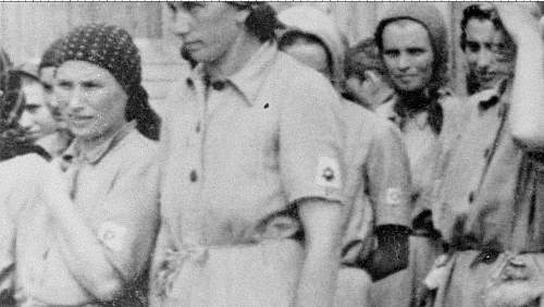 Click image for larger version.  Name:Auschwitz_prisoners.jpg Views:9877 Size:147.5 KB ID:412651