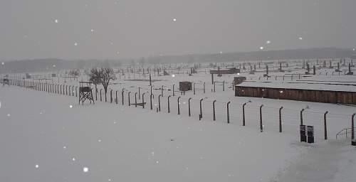 Auschwitz 26-01-07 126.jpg