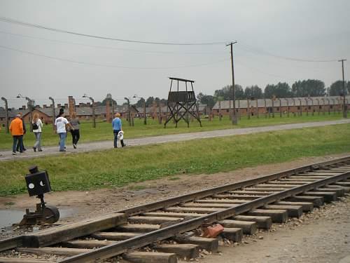 Auschwitz shoe