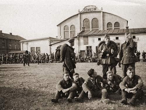 Owning Auschwitz