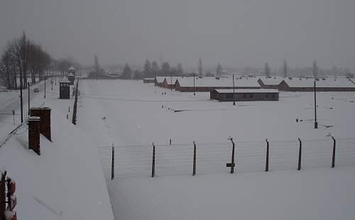 Auschwitz 26-01-07 133.jpg
