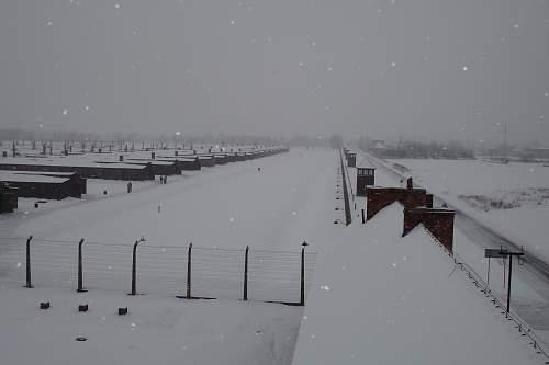 Auschwitz 26-01-07 124.jpg
