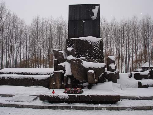 Auschwitz 26-01-07 162.jpg