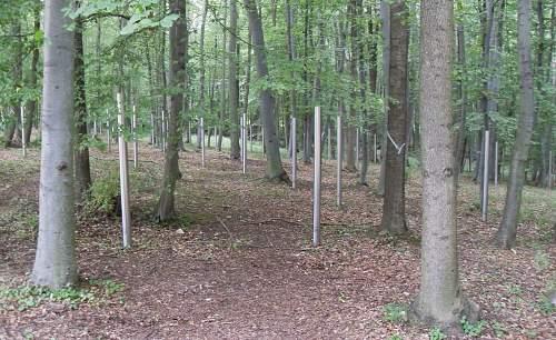 buchenwald 17.8 (83).jpg