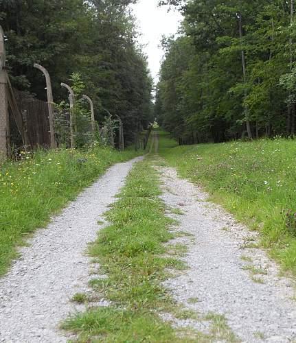 buchenwald 17.8 (81).jpg