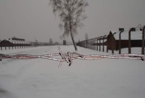 KZ Fencing