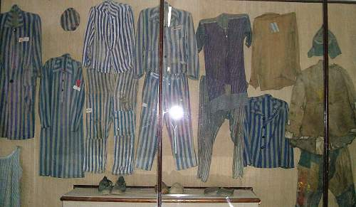 Concentration Camp Prisoner's Uniforms - Page 4