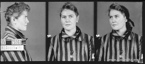 Click image for larger version.  Name:Auschwitz_inne_grupy_2.jpg Views:3 Size:31.2 KB ID:522740