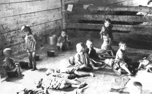 children unit -camp collection farm -st.grad.jpg