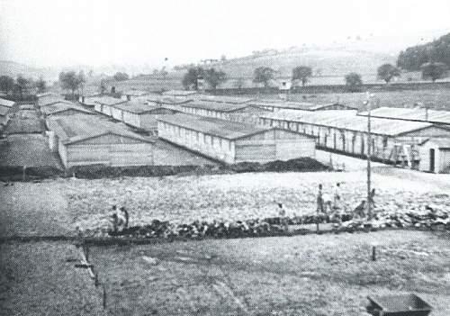The Gusen Camps
