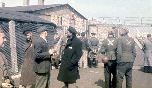 KZ-DACHAU - Colour Liberation Images