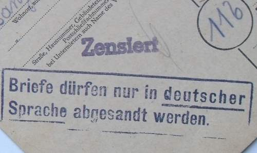 M-D.ZENS.jpg